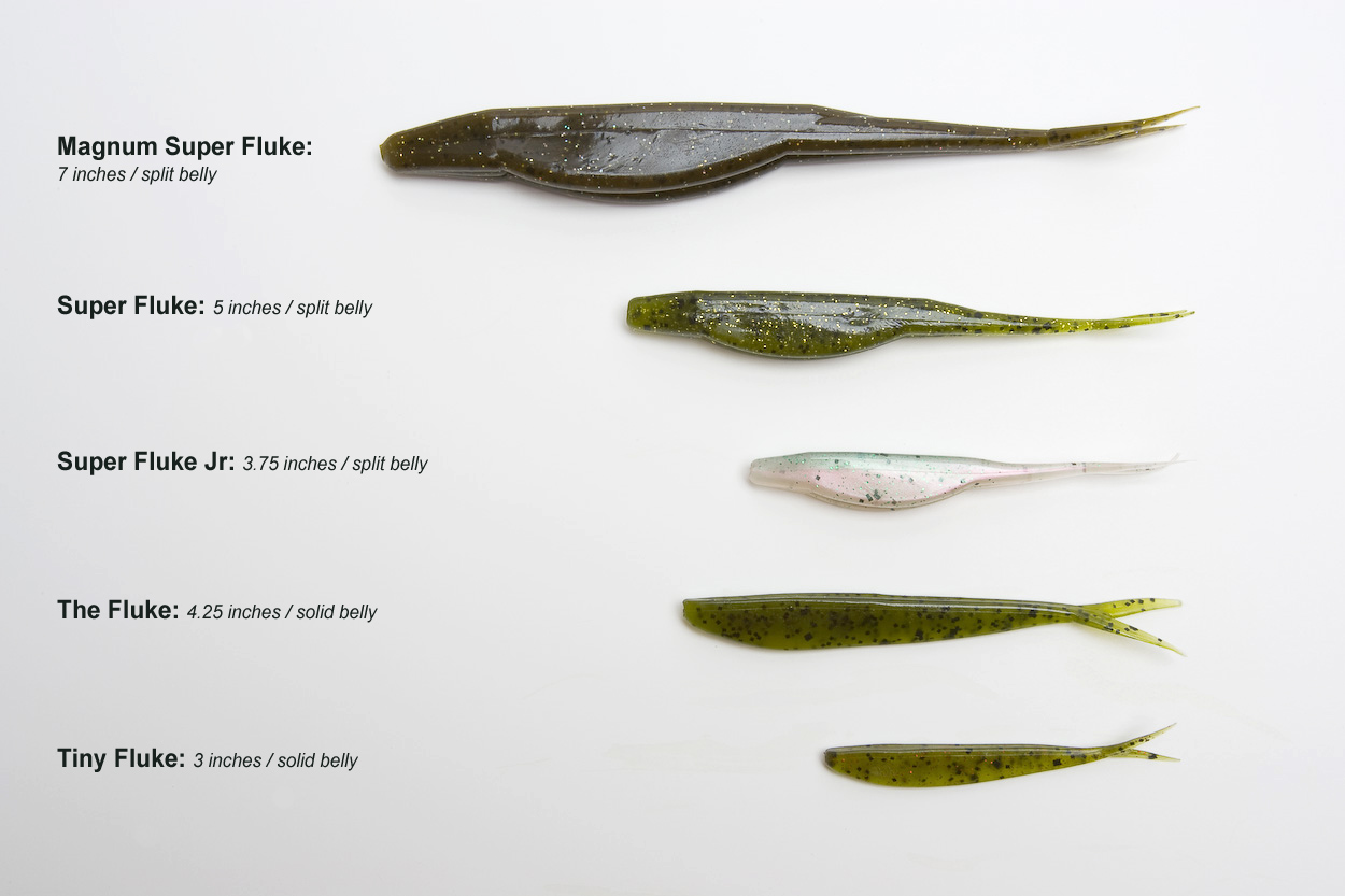 Whats your technique for flukes fishing tackle bass for Fluke bass fishing